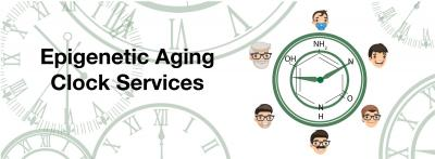 Zymo Research Launches Service Based on Epigenetic Aging Clock Technology
